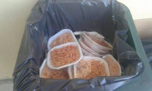 """Pasti buttati dagli immigrati, la grillina: """"Non digeriscono la pasta"""""""