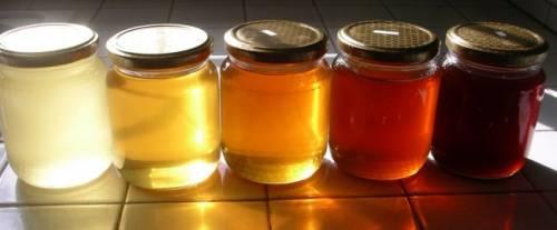 Mai mettere il miele nel biberon: al neonato potrebbe costare la vita