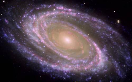 """Il Papa: """"Il Big Bang non contraddice l'intervento di Dio nel creato"""""""