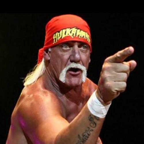 Ora Hulk Hogan replica a Crosetto su Twitter: è mistero social