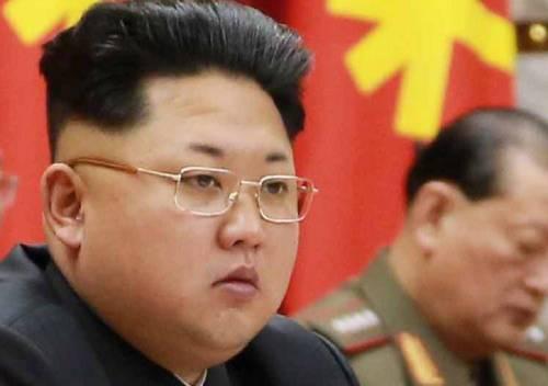 Le tartarughe muoiono di fame e Kim Jong fa giustiziare il direttore dell'acquario
