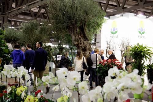 "Il florovivaismo ""sboccia"" a Myplant & Garden: 8.500 visitatori"