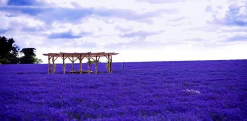 I 10 posti più colorati al mondo, foto 5