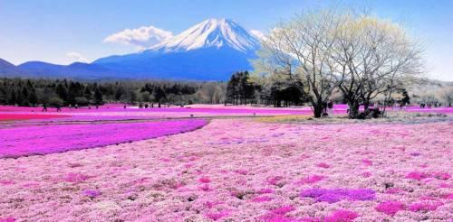 I 10 posti più colorati al mondo, foto 8