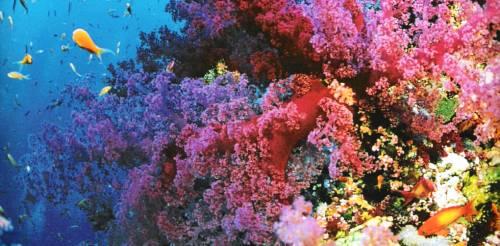 I 10 posti più colorati al mondo, foto 7