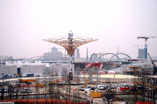 L'albero di Expo mette la chioma 5