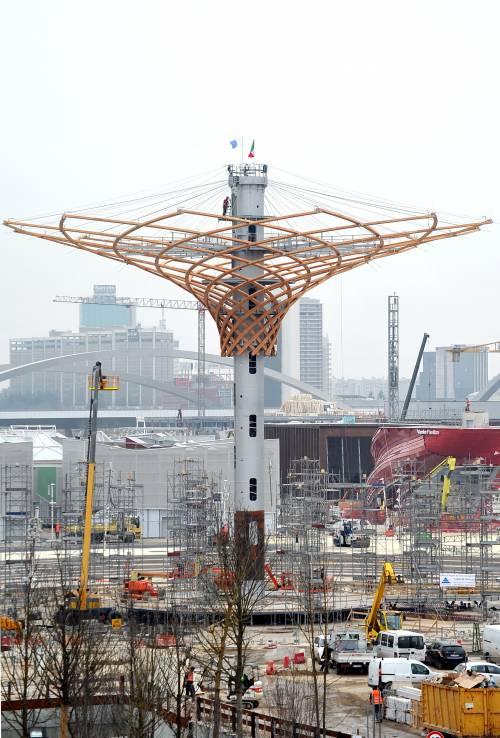 L'albero di Expo mette la chioma 11