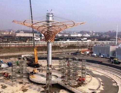L'albero di Expo mette la chioma 8