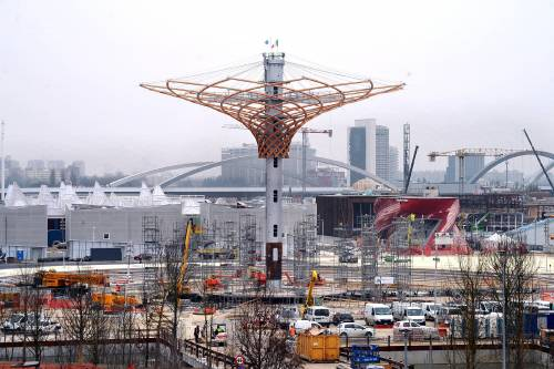 L'albero di Expo mette la chioma 13