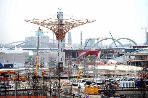 L'albero di Expo mette la chioma 2