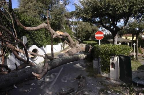 Il maltempo sull'Italia 3