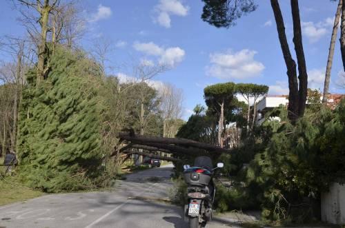 Il maltempo sull'Italia 5