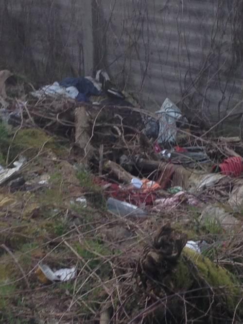 I nuovi nascondigli dei rom immersi nel degrado 2