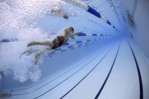 Defecatori anonimi attaccano piscina pubblica in Nuova Zelanda