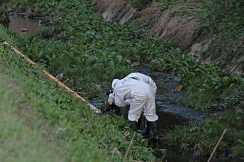 La polizia ispeziona il fosso dove è stato trovato il cadavere della ex modella 7