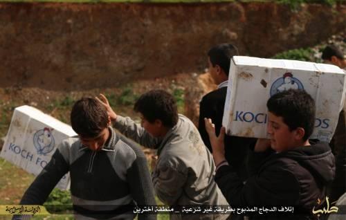 """L'Isis brucia il pollo destinato ai profughi: """"È macellato negli Usa"""" 3"""