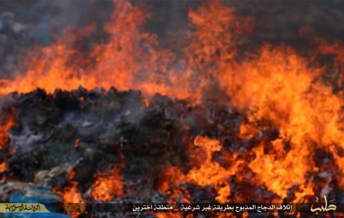 """L'Isis brucia il pollo destinato ai profughi: """"È macellato negli Usa"""" 6"""