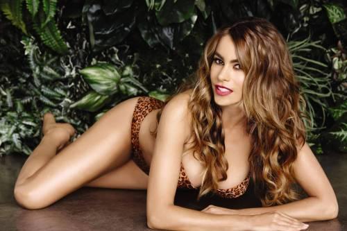 Sofia Vergara e il seno grande: foto 3