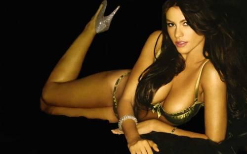 Sofia Vergara e il seno grande: foto 17