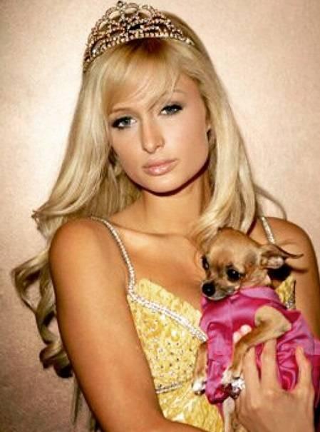 """Paris Hilton su Instagram: """"E' morta la mia Tinkerball"""" 6"""