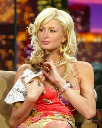 """Paris Hilton su Instagram: """"E' morta la mia Tinkerball"""" 5"""