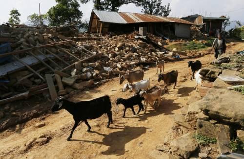 Il villaggio distrutto di Pokharidanda 12