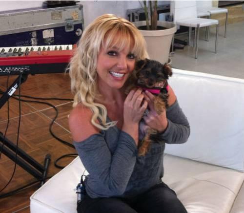 Britney Spears, le foto più belle 22