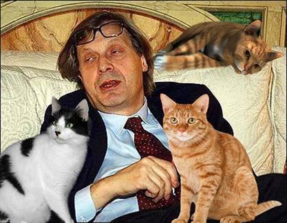 Vittorio Sgarbi invaso da immagini di gatti 12