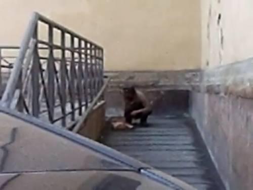Uomo defeca sulla rampa dei disabili a Firenze