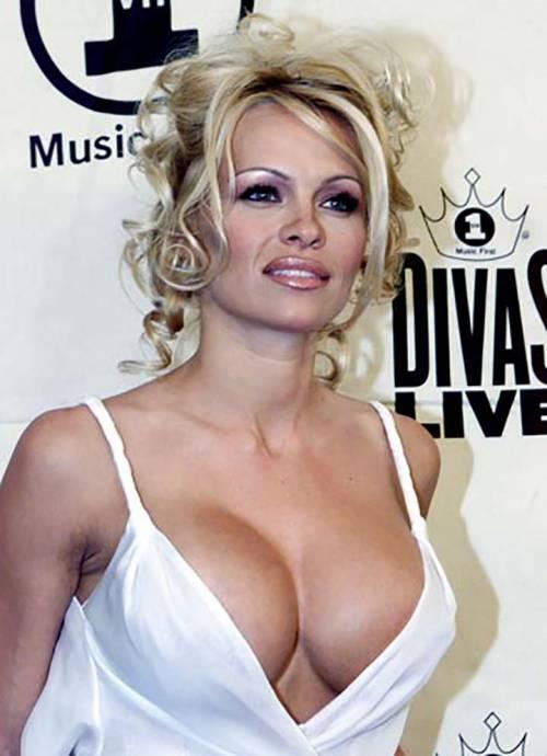 Pamela Anderson sexy e impegnata 36