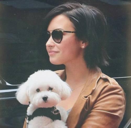 Demi Lovato in Instagram 18