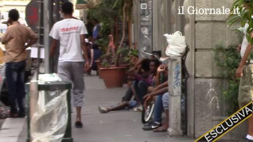 Porta Venezia: tutti in coda per avere i documenti falsi e lasciare l'Italia 2