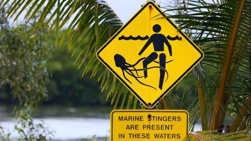 Le dieci spiagge più pericolose del mondo 2
