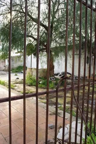 Il ghetto, la baraccopoli dei braccianti africani 5