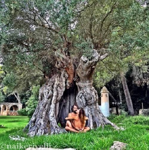 Naike Rivelli e Yari Carrisi nudi: è amore sotto l'ulivo di Al Bano
