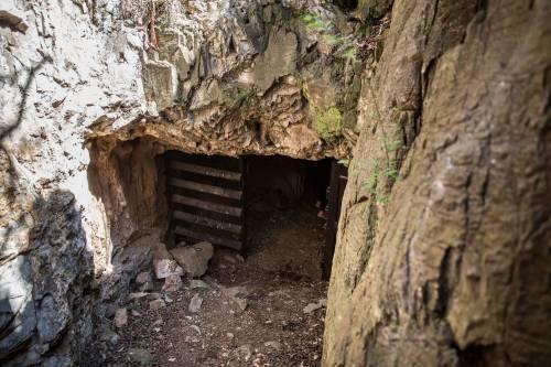 I resti dell'Homo Naledi, nuova specie umana 3