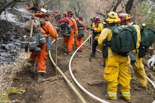 California divorata dalle fiamme. 400 case distrutte 16