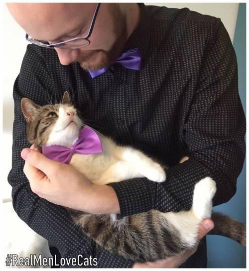Monty, il gatto con la sindrome di Down 12