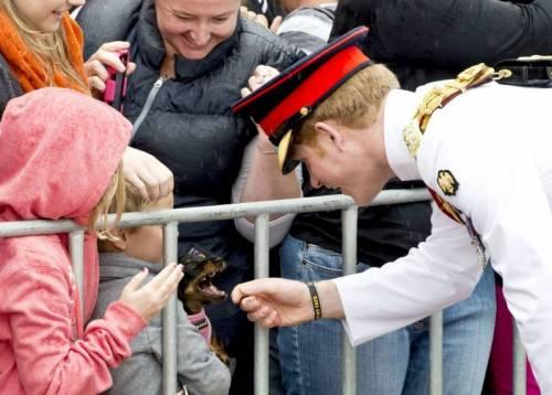 Principe Harry, le foto più affascinanti 26