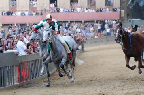 I sondaggi clandestini e le corse dei cavalli spopolano sul web