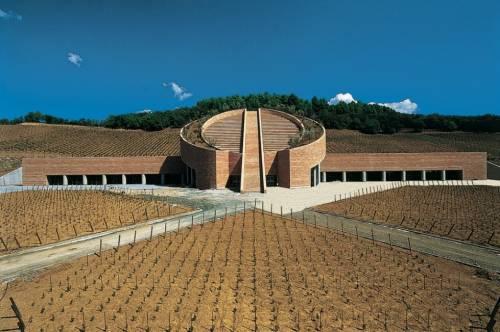 Vino, da Toscana a Piemonte tra gusto e glamour 4