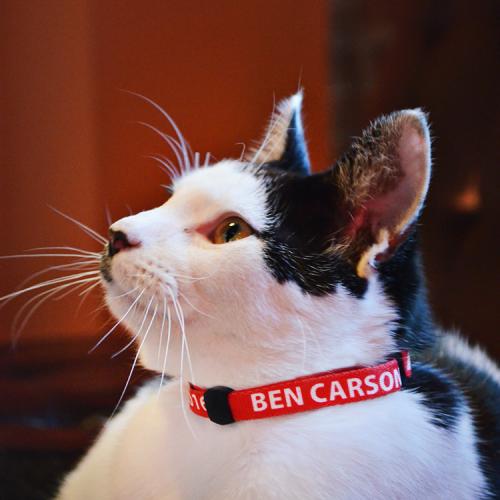 I gadget di Ben Carson 12