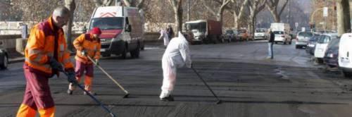 Roma, l'emergenza del guano e il rischio tbc