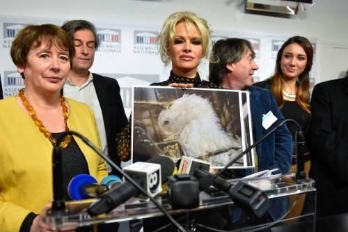 Pamela Anderson contro il foie gras 4