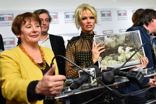 Pamela Anderson contro il foie gras 5