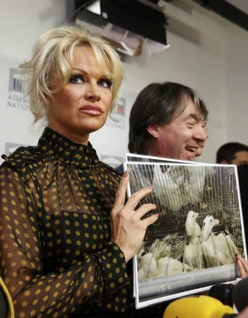 Pamela Anderson contro il foie gras 7
