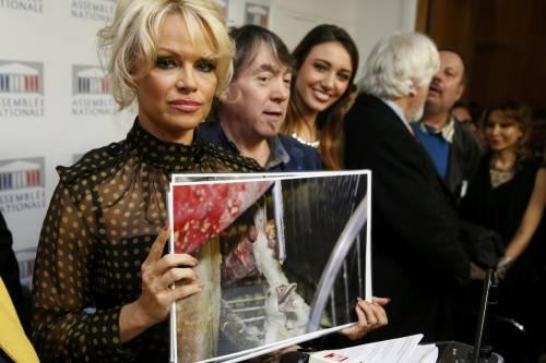 Pamela Anderson contro il foie gras 6