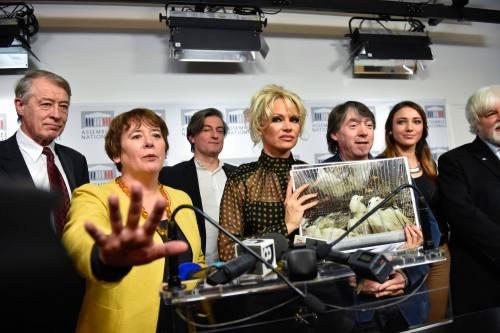 Pamela Anderson contro il foie gras 13