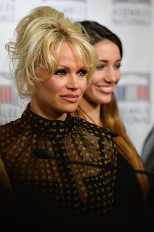 Pamela Anderson contro il foie gras 17