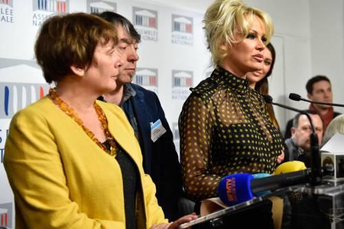 Pamela Anderson contro il foie gras 19